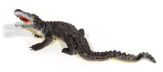 3D Tier Franzbogen großer Alligator