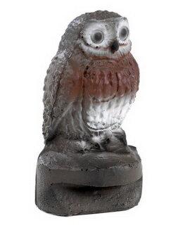 3D Tier Franzbogen Steinkauz