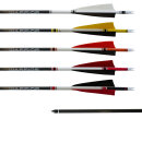 Gold Tip Warrior Carbonpfeil Traditional mit Cresting