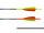 Gold Tip Warrior Carbonpfeil Traditional mit Cresting fluoreszierend