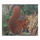 Scheibenauflage Eichhörnchen 21,5 cm x 24,5 cm