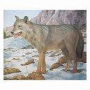 Scheibenauflage Wolf  80,5 cm x 96,5 cm